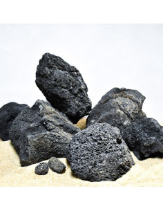 Black lava premium (au kilo)