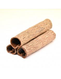Tubes de Catappa x3
