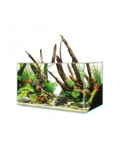 Oase - ScaperLine 60 Aquarium